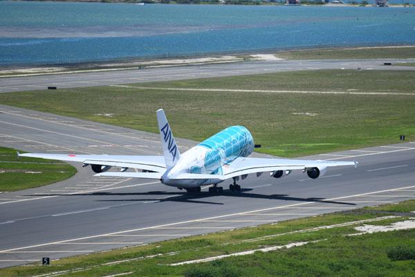 ANA(エアバスA380型機、ダニエル・K・イノウエ国際空港)