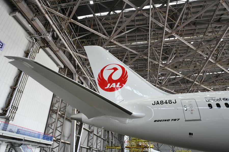 JAL(ボーイング787-8型機、国内線仕様機)