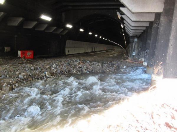 小仏 TN 東坑口 土砂流入状況