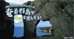 JALダイナミックパッケージ奄美