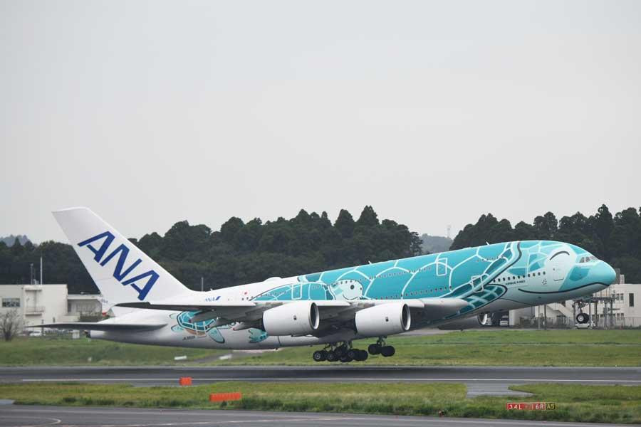 ANA(エアバスA380型機、2号機)