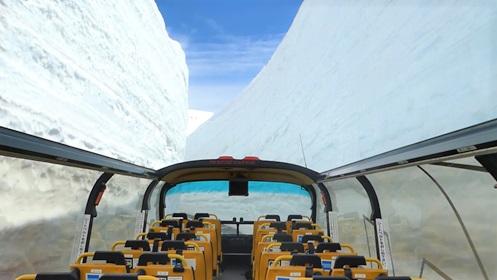 スカイバス富山 雪の大谷 アルペンルート